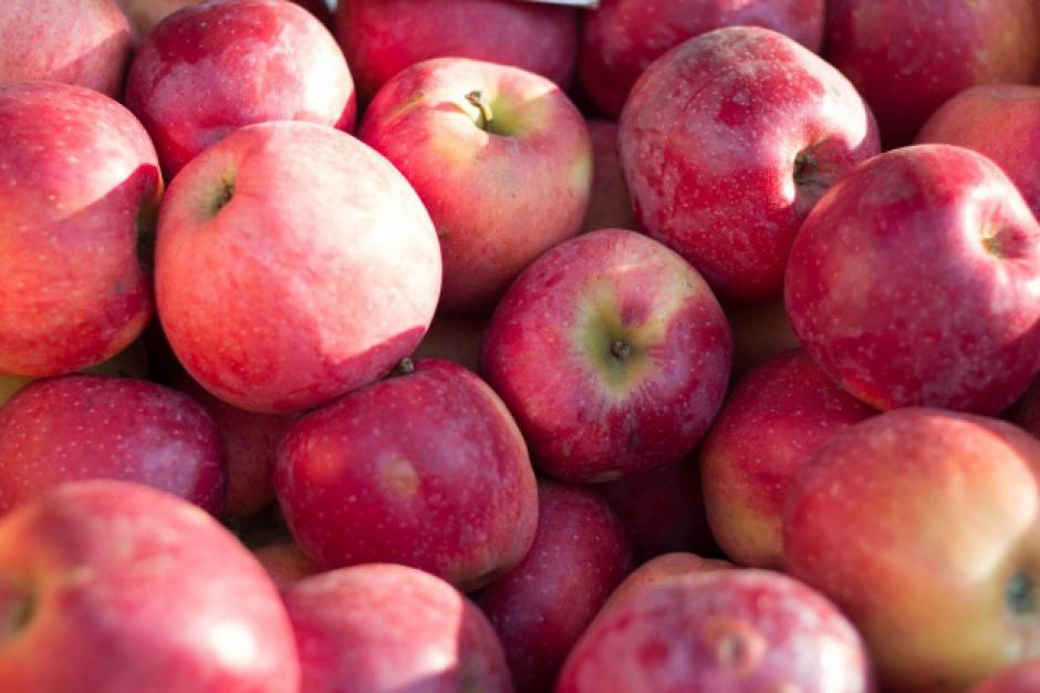 Wzroły ceny jabłek przemysłowych na Mazowszu