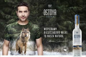 Marka Ostoya Vodka wspiera ochronę wilków w Bieszczadach