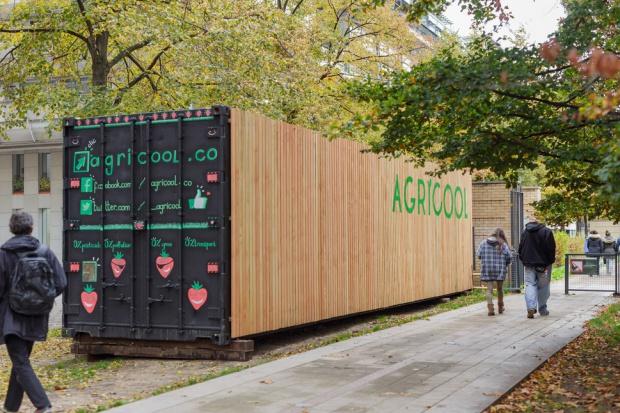 Francuski start-up wyhoduje truskawki w środku miasta