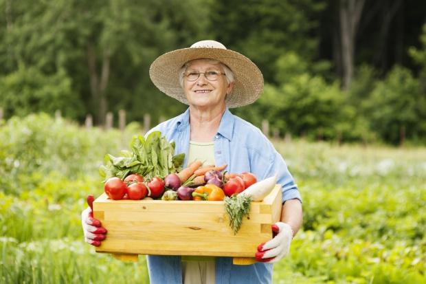 Osobom w wieku produkcyjnym brakuje żywności częściej niż seniorom
