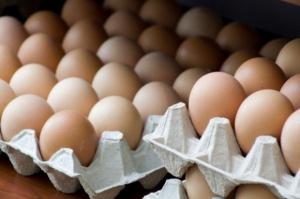 GIS ostrzega przed salmonellą w jajach z sieci Dino