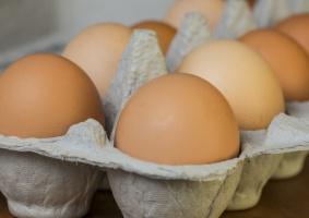 Fermy Drobiu Woźniak wycofały jaja z salmonellą ze sklepów DINO