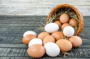 Największa sieć hotelowa na świecie rezygnuje z jajek z chowu klatkowego