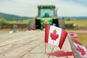 Czy Polska żywność podbije Kanadę dzięki CETA?
