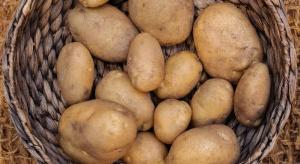 Ceny ziemniaków mogą być jeszcze niższe