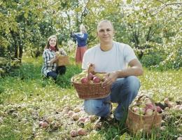 Ukraińcy w Polsce podejmują się prostych prac, chociaż są dobrze wykształceni