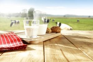 Rosną ceny mleka w skupie