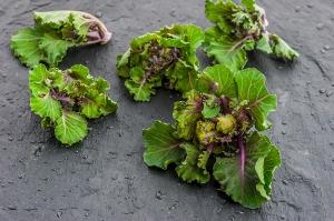Marka Fit&Easy wprowadza kalerosse - nowe warzywo na polskim rynku