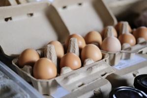 AccorHotels i Grupa Orbis rezygnują z jaj z chowu klatkowego