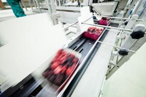 Małopolskie: Poszukiwany inwestor do zakładu przetwórstwa owoców i warzyw