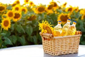 Olej słonecznikowy - ukraiński hit eksportowy