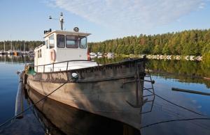 Rybołówstwo śledzia i szprota przystępuje do oceny MSC