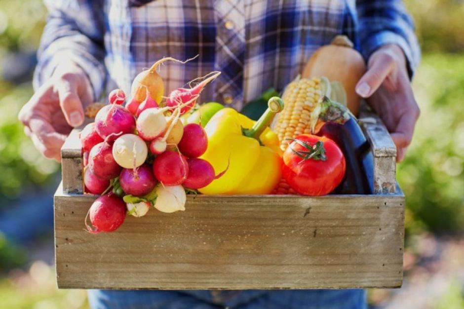 Mniejsza produkcja owoców we Francji
