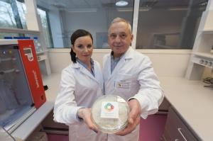 Naukowcy z �odzi chcą pozyskiwać białko spożywcze z rzepaku