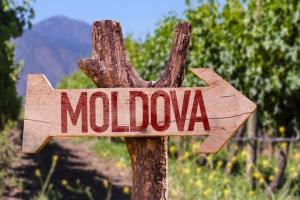 Wina mołdawskie coraz bardziej popularne w Polsce; jesteśmy rynkiem nr 1 dla Mołdawii