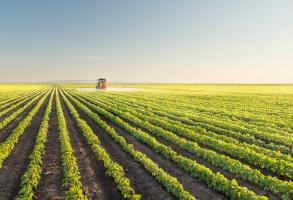 Eksport unijnych produktów rolnych w 2016  na rekordowym poziomie