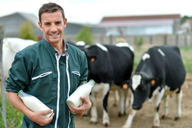 W styczniu 2017 r. spadła średnia cena mleka