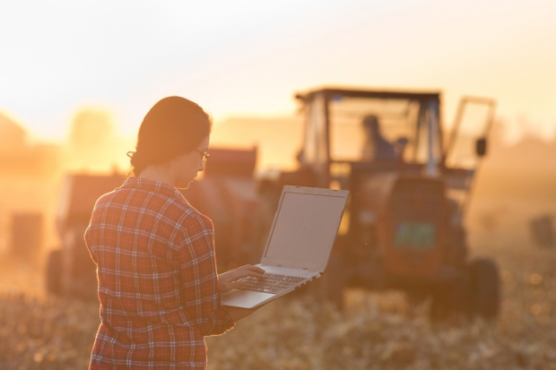 Koniunktura w polskim rolnictwie na plus
