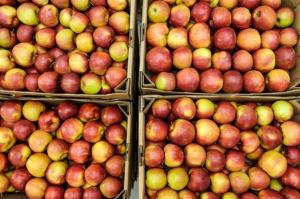Jak kształtują się ceny jabłek deserowych?