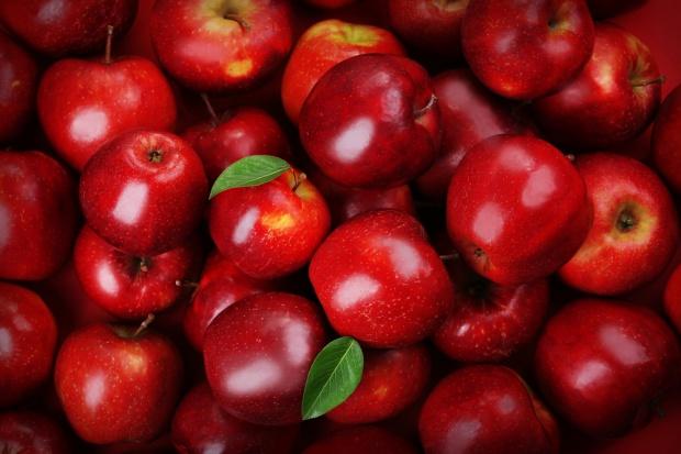 Kampania promująca polskie jabłka w Egipcie i Algierii z budżetem 2,5 mln euro
