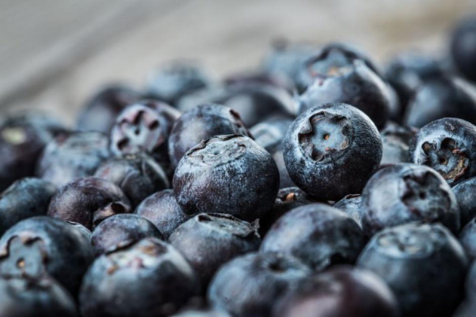 Polscy producenci borówki promują nowy standard zbioru owoców