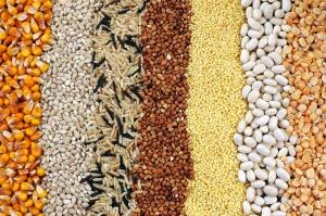 Sawex: Polacy chętnie sięgają po różnorodne rodzaje ryżu oraz kasz