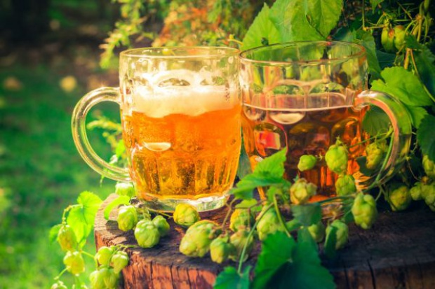 Branża piwna kupuje ponad 220 tys. ton różnych surowców od rolników
