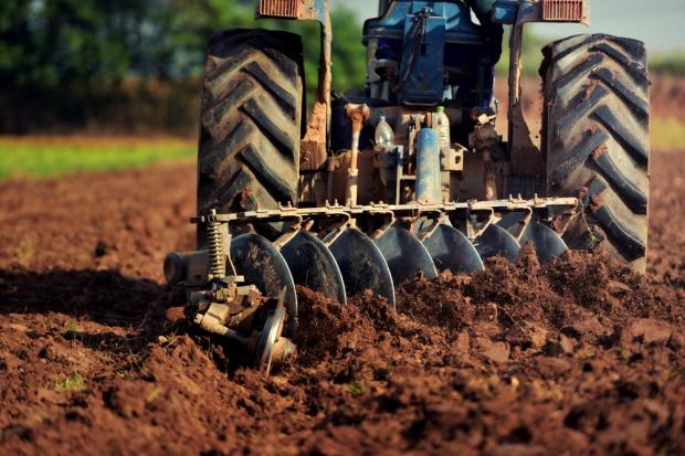 Śląscy rolnicy sprowadzają obornik z Holandii