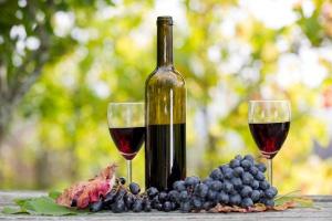 Moda na ekologię i zdrowy tryb życia dotarła też do świata win
