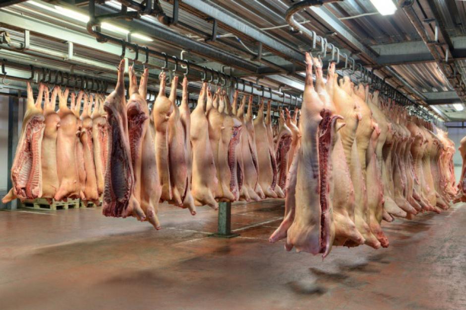 UE zaostrzy kontrole jakości żywności