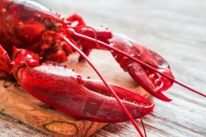 Biedronka wprowadza kanadyjskiego homara z certyfikatem MSC