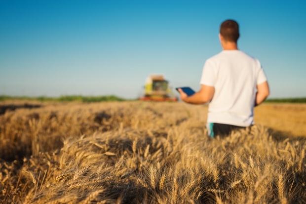Rolnicy biorą coraz więcej pożyczek na zakup ziemi