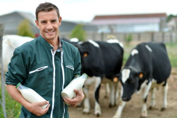 W lutym nadal rosła cena mleka płacona rolnikom