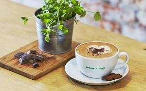 Organic Coffee rozwija się w Krakowie i rusza z coffee truckiem
