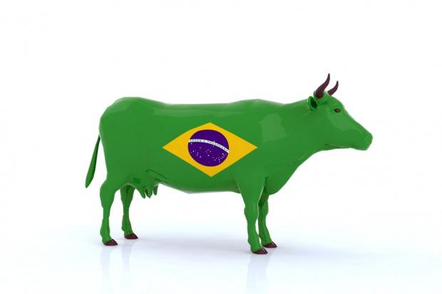 Brazylia liczy na podtrzymanie wysokich prognoz eksportu wołowiny