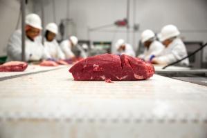 Analitycy: Polska branża mięsna musi szukać wyższych marż