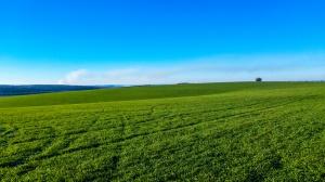 UE chce uprościć życie rolników