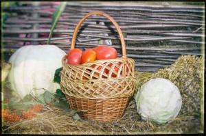 Polacy cenią rodzime produkty rolno-spożywcze