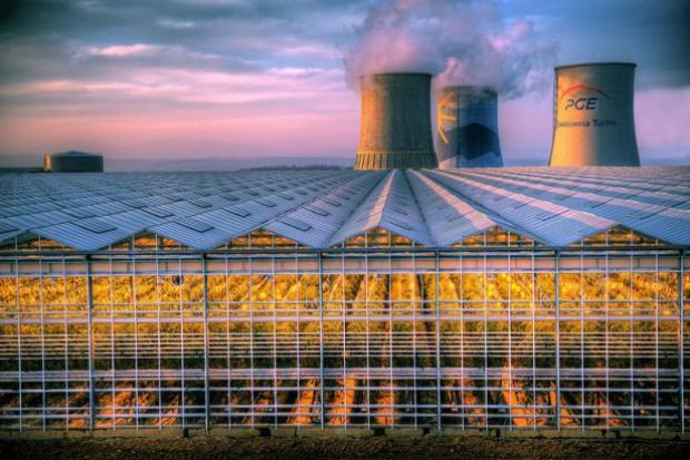 Czesi żądają ograniczenia emisji światła ze szklarni w Bogatyni