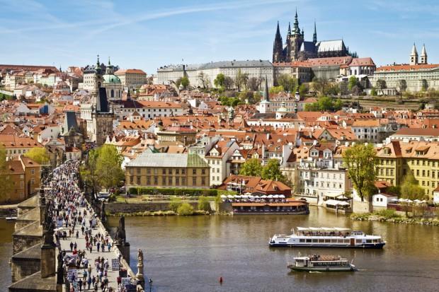 Czesi atakują polskie służby weterynaryjne