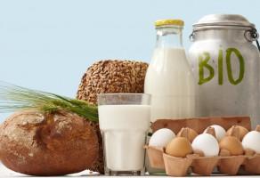 Wchodzi w życie nowy system certyfikacji importu bioproduktów do UE