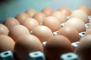 Biedronka rezygnuje z jajek z chowu klatkowego