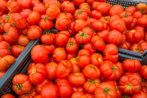 Polska zaimportowała 142,2 tys. ton pomidorów; wyeksportowała 95 tys. ton