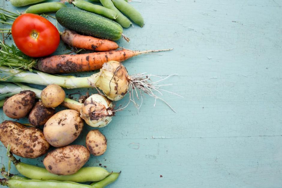 Żywność ekologiczna dzisiaj i jutro – analiza rynku