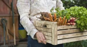 """Rynek żywności ekologicznej ma swoje """"5 minut"""""""