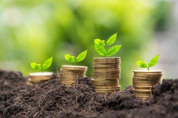 ARiMR: Do 15 maja można składać wnioski o przyznanie płatności obszarowych na 2017 r.