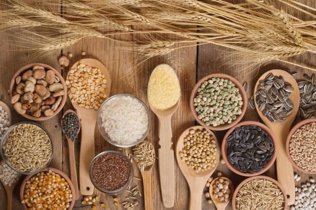 Starożytne odmiany i gatunki zbóż przeżywają renesans