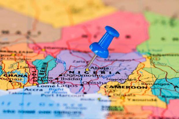 Polski drób przemycany do Nigerii?