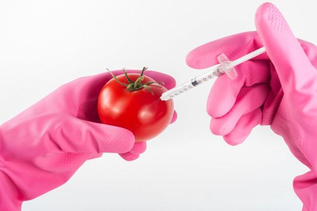 GMO: Areał upraw na świecie wzrósł o 3 proc. w 2016 r.
