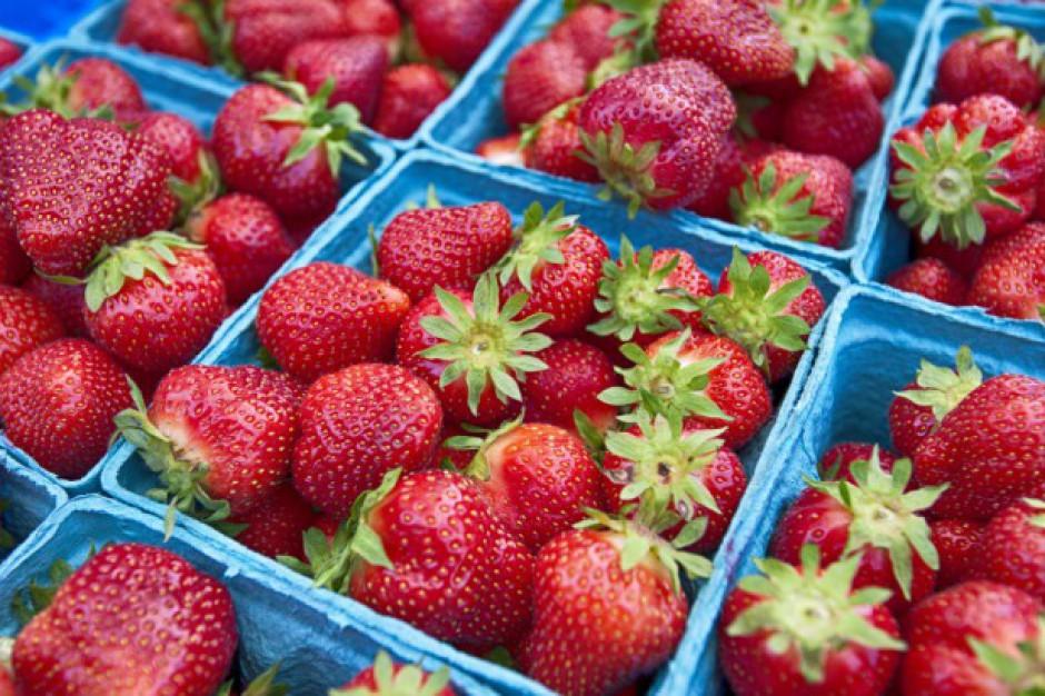 Ceny truskawek są rekordowe. Sięgają 20-25 zł/kg. Czereśnie będą droższe